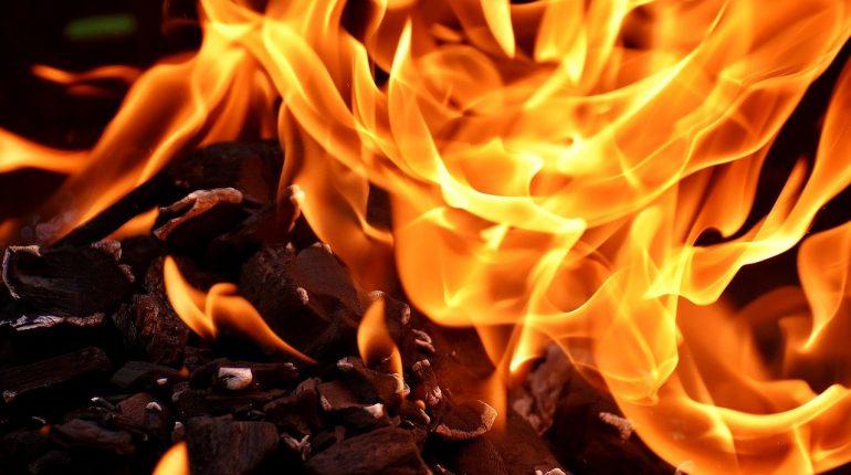 Gdzie kupić węgiel kamienny w Zamościu?